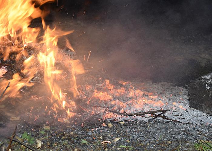 Residents urged not to burn garden waste during lockdown